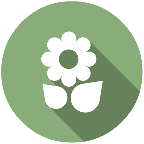 Consciência Ambiental - Filtros e Equipamentos Ecologicamente Corretos