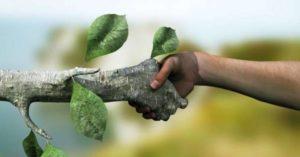 Meio Ambiente e Proteção